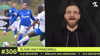 Vorschaubild für Elche holt Schalke-Spieler!
