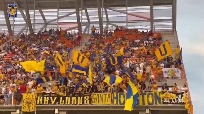 Imagen de vista previa para Los aficionados de Tigres apoyan al equipo en Texas
