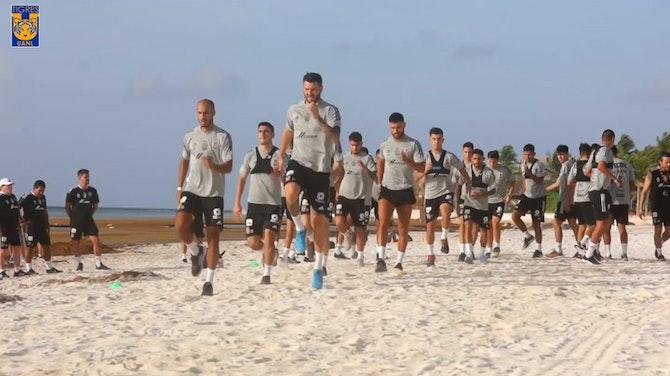 Tigres trabaja en la playa