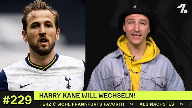 Warum Harry Kane sich seinen Wechsel verdient hat