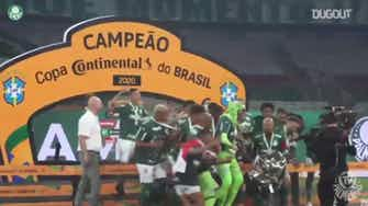 Preview image for Palmeiras celebrate with Brazilian Cup trophy