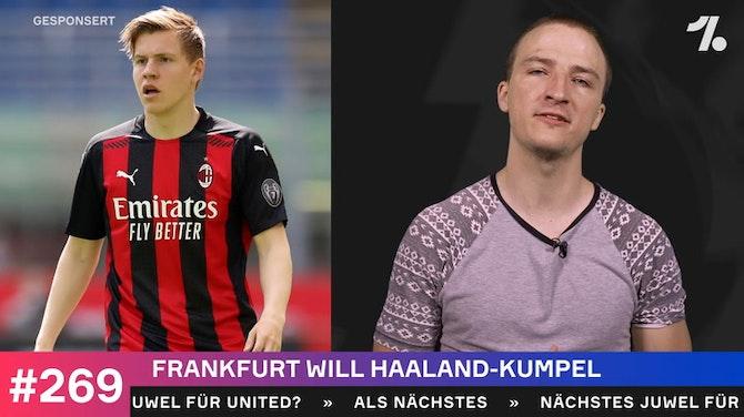 Vorschaubild für Frankfurt will Haaland-Kumpel!