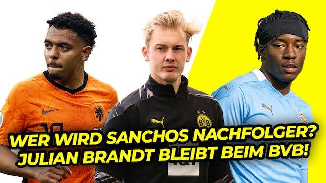 Vorschaubild für Dieser Spieler soll Sanchos Nachfolger werden! Julian Brandt bekennt sich zum BVB!