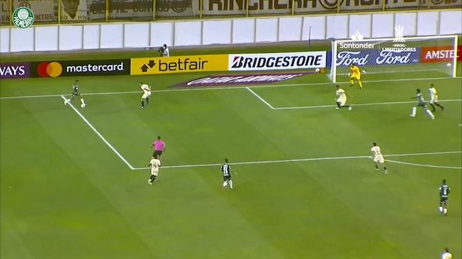 Cinco golaços de Raphael Veiga com a camisa do Palmeiras
