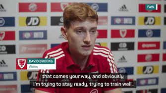 Preview image for Brooks 'unfortunate' as Bale's Wales understudy