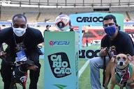 Final entre Flamengo e Fluminense terá ação com cães abandonados entrando em campo
