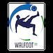Logo : Walfoot.be