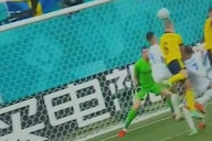 (Video) Newcastle keeper Martin Dubravka makes stunning save to deny Sweden a certain goal