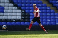 Pundit says move for Charlie Wyke would be a 'very good deal' for Celtic