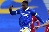 Brighton boss Potter eager to keep hold of Welbeck