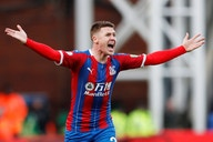 Newcastle heading for transfer disaster over Crystal Palace's James McCarthy