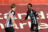 McLeish backs Newcastle to seal 'truly incredible' Willock signing after Bruce update